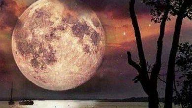 قمر در عقرب چیست , روزهای قمر در عقرب , معنی قمر در عقرب , روزهای قمر در عقرب 95, قمر در عقرب 95, قمر در عقرب یعنی چه , مفهوم قمر در عقرب , جدول قمر در عقرب 95, جدول روزهای قمر در عقرب 95, روزهای نحس سال 95, قمر در عقرب برای 95, تقویم قمر در عقرب 95, قمر در عقرب سال 95 - تقویم قمر در عقرب