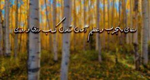 283672629363727-310x165 دعا و ختم مجرب رزق و روزی