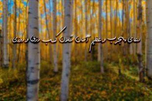 283672629363727-310x205 دعا و ختم مجرب رزق و روزی