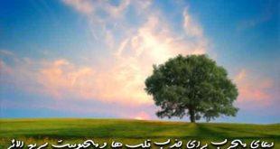 278360376207396027-310x165 دعا و ختم مجرب مهر و محبت