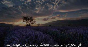 208360270672607-310x165 ادعيه و اذكار دعا و ختم مجرب