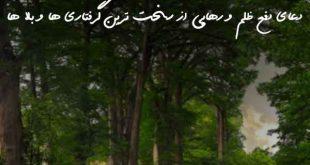 23603876027367093-310x165 دعا و ختم مجرب