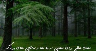 023683607832603-310x165 دعا و ختم مجرب