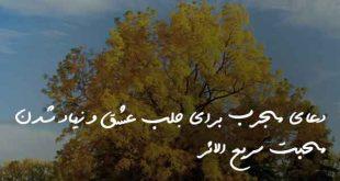 07323862038607-310x165 دعا و ختم مجرب مهر و محبت
