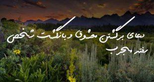 20383720732037-310x165 دعا و ختم مجرب مهر و محبت