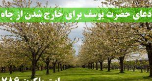 دعاى-حضرت-يوسف-برای-خارج-شدن-از-چاه-310x165 ادعيه و اذكار دعا و ختم مجرب