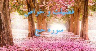 18c9vcsn-1-310x165 فضیلت و خواص سوره حج