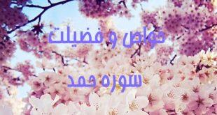 68jkf8ow-1-310x165 خواص و فضیلت سوره حمد