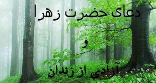 6cwvo750-1-310x165 دعای حضرت زهرا برای آزادی از زندان
