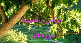 ee6ybytj-1-310x165 خواص سوره های قرآنی