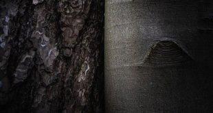 ADE497F8-CA78-4607-AF7A-5F907EBE68E1-310x165 ادعيه و اذكار دستورالعمل و نسخه مجرب دعا دعا و ختم مجرب دعای حاجت روایی دعای رفع غم و ناراحتی دعای رفع مشکلات و گرفتاری دعای شفای بیماری